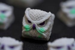 Alpha Keycaps - Keypora - Ma Nuts