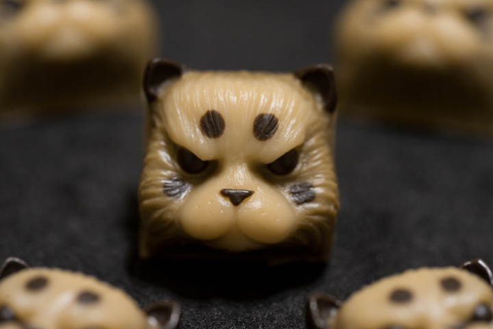 Alpha Keycaps - Choco Cookie salvador